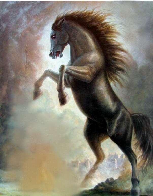 Carita Kuda Kosong (1)