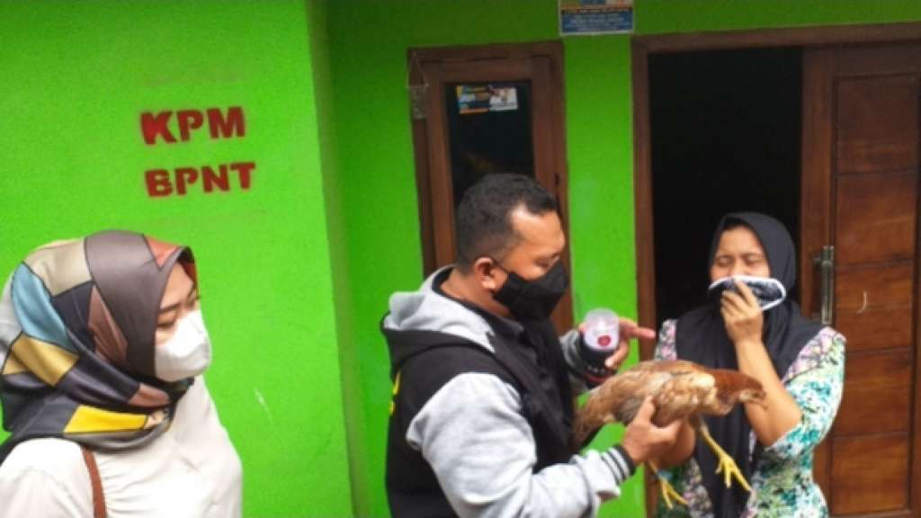 Ada Ayam Kampung di BPNT, DPRD Turun Tangan