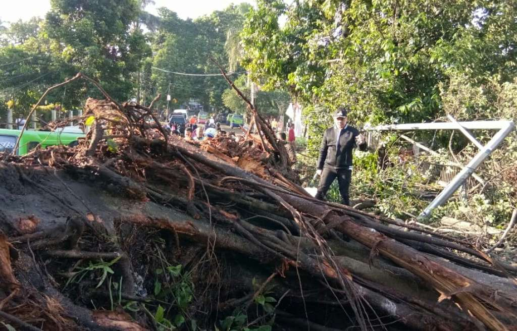 Pemkot Bogor Alokasikan 1,5M Untuk Korban Bencana Puting Beliung